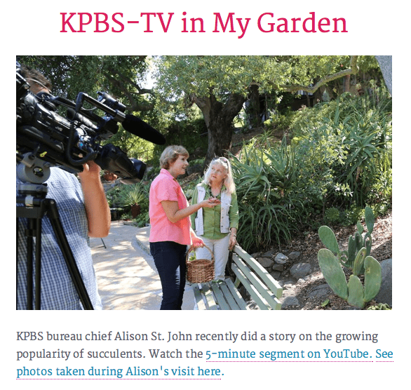 Debra talks Succulents on KPBS and NPR