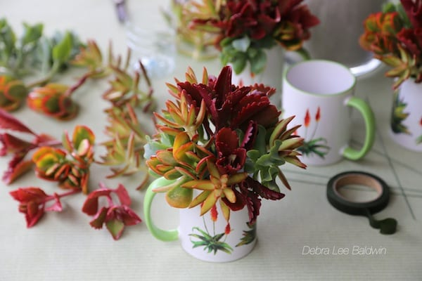 Make a Succulent Mug Gift Bouquet