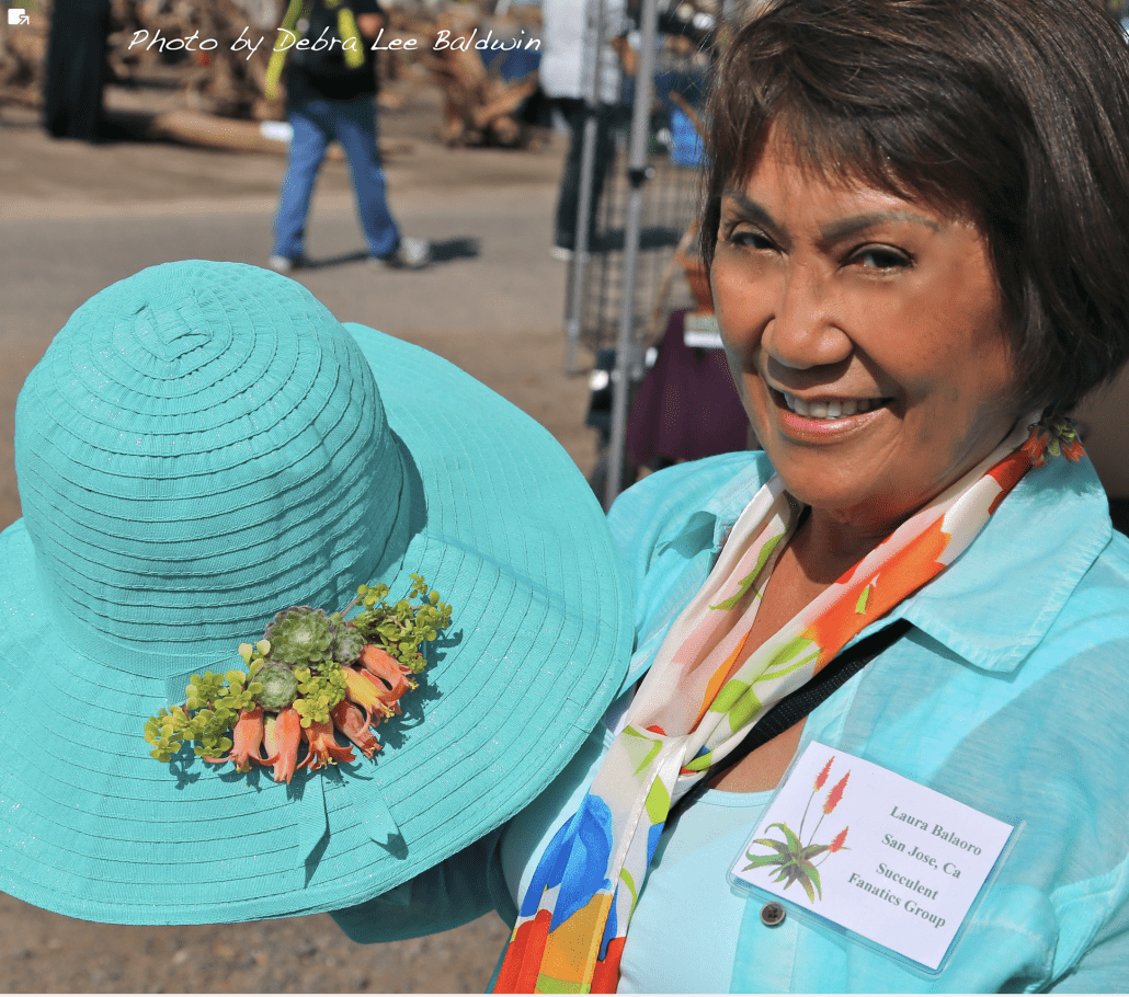 Succulent-decorated hats and art-to-wear