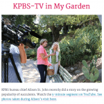 KPBS and NPR with Debra Lee Baldwin