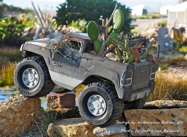 Nursery manager Tom Jesch repurposed a toy truck as a planter for succulents