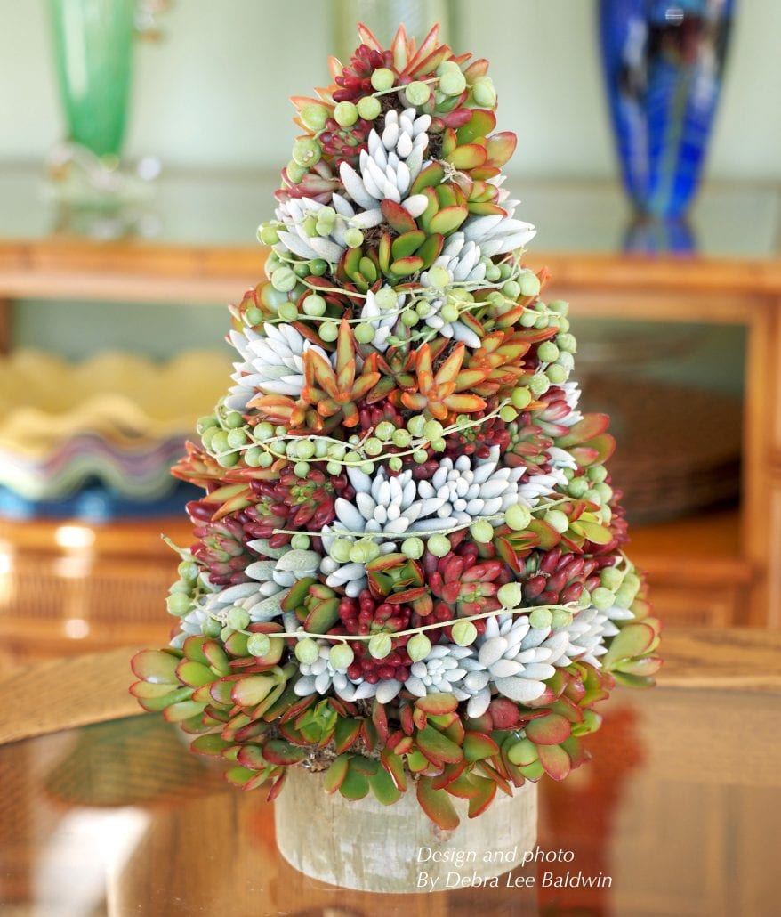 DIY succulent topiary tree holiday centerpiece